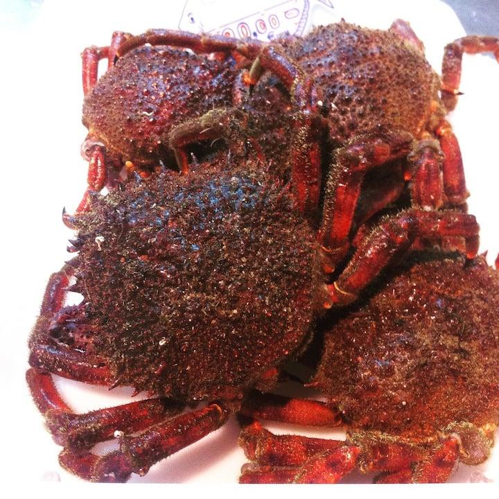 Best Sea food