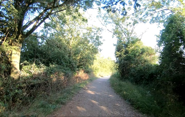 East Marden track