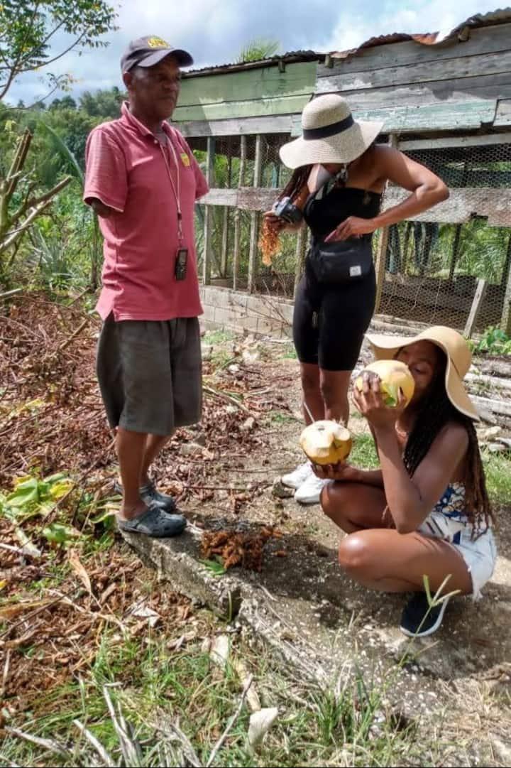 Enjoying fresh coconut water