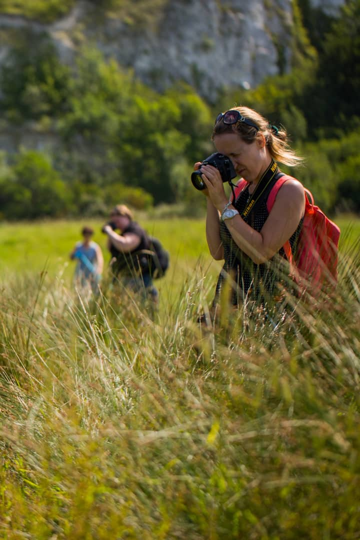 Guests photographing  wildlife and fauna