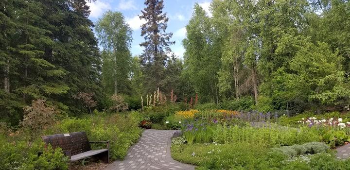 Lile's Garden