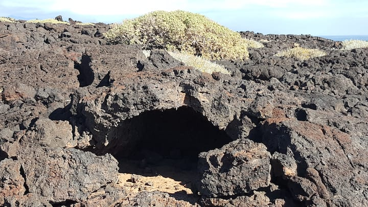 The remain of a lava flow and tube