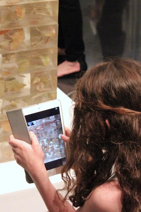 Mostrar la imagen proporcionada por el anfitrión en pantalla completa