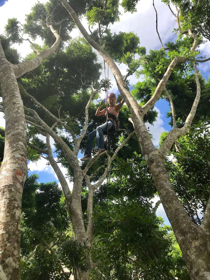 High in the treetop, 60 feet girl power.