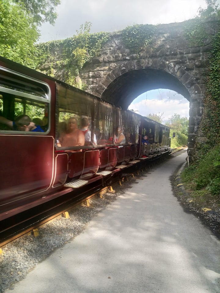 All aboard the Suir Valley Railway