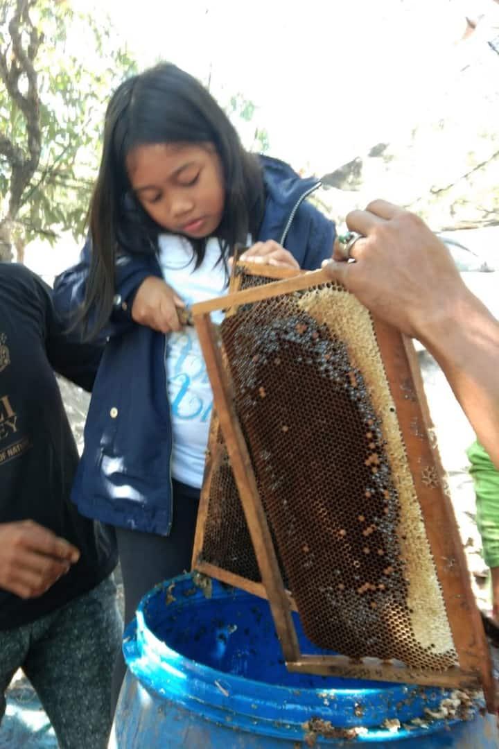 How To...Bali Honey
