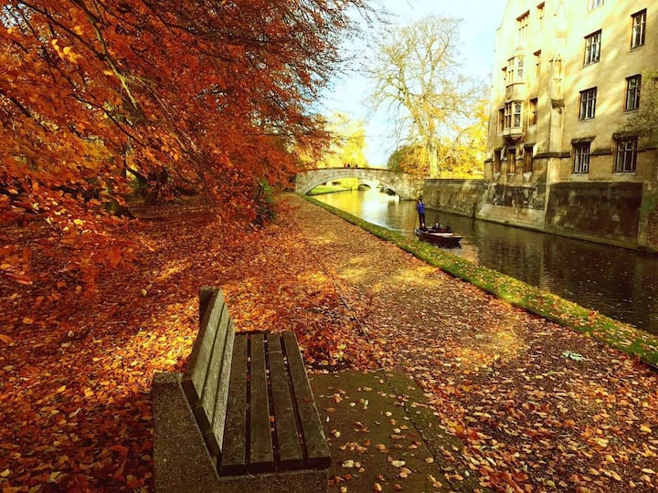 Autumn by River Cam