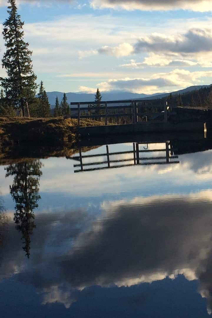 Dammen vid Fröå Gruva