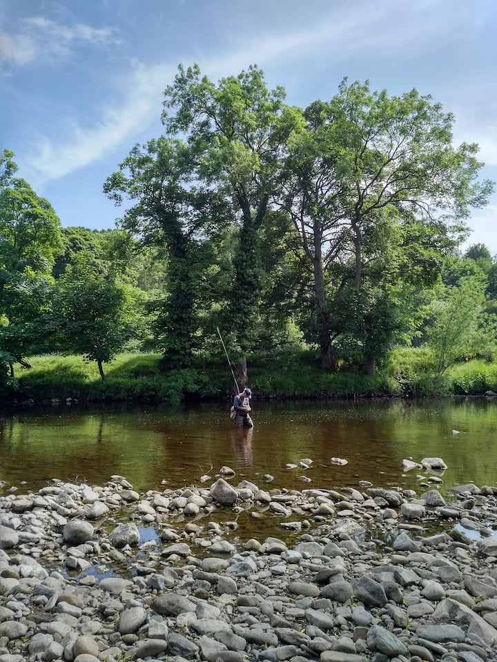 Fly Fishing on the River Swale