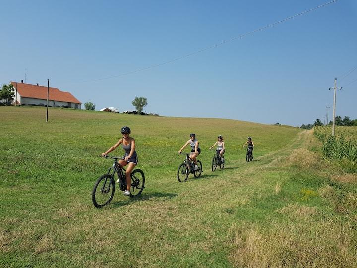 Colline e prati in E-Bikes