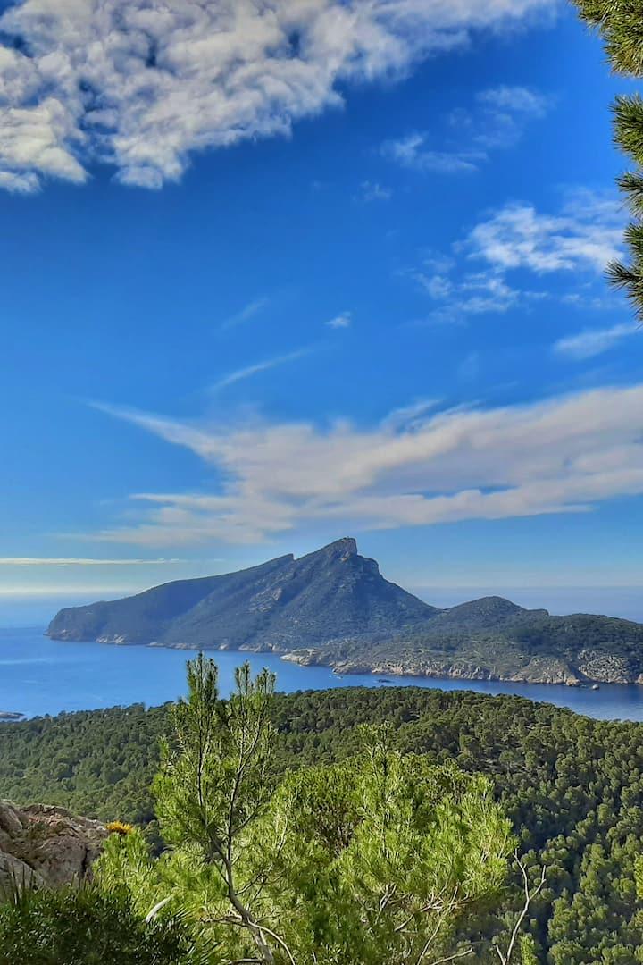 Dragonera Island View