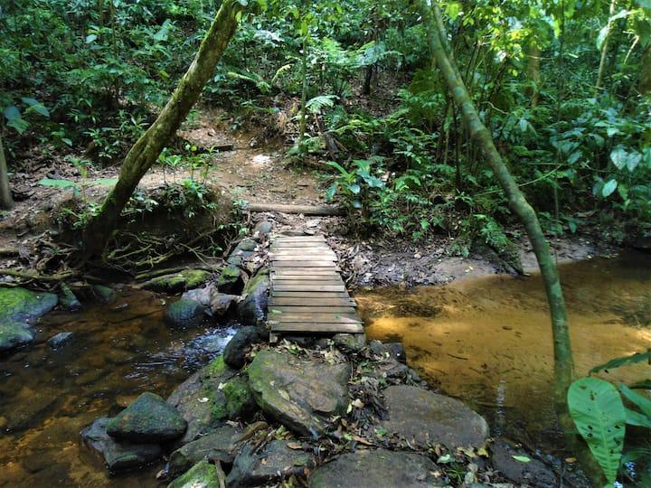 Ponte sob as águas