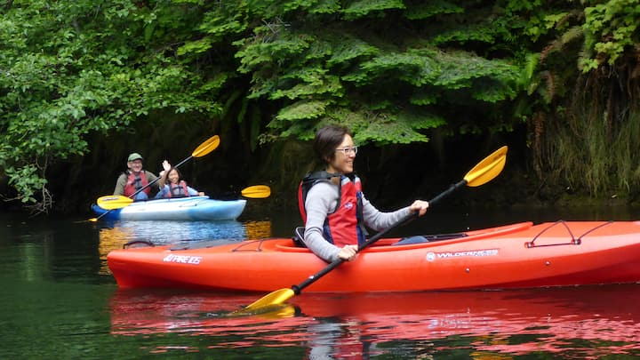 Kayaking in the redwood forest