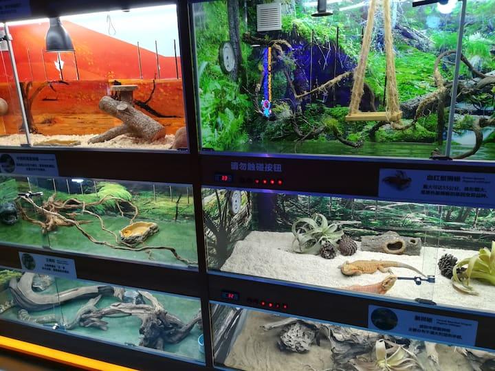东湖海洋世界爬虫馆