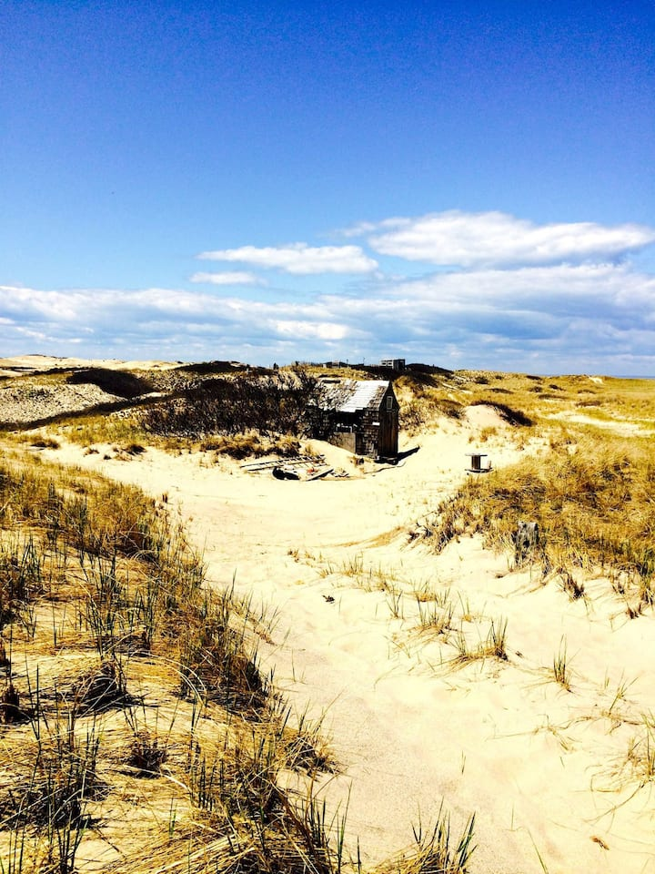 Visit a Dune Shack!