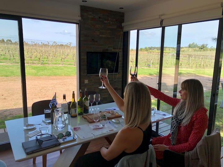 Wine Education