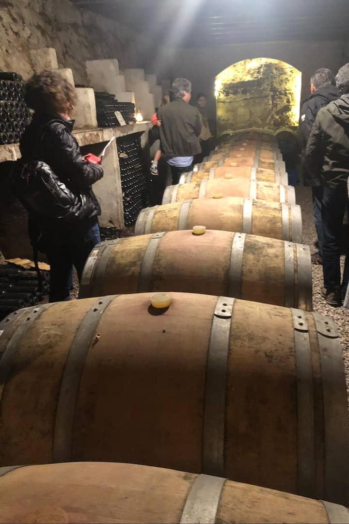Cellar Experience at Urlice Vineyards