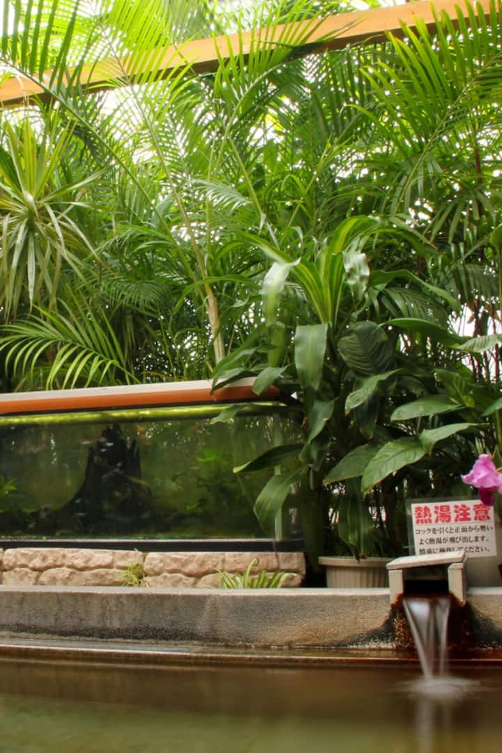 Local onsen inside a greenhouse