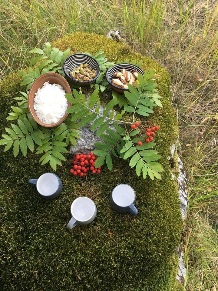 Tea ceremony in nature