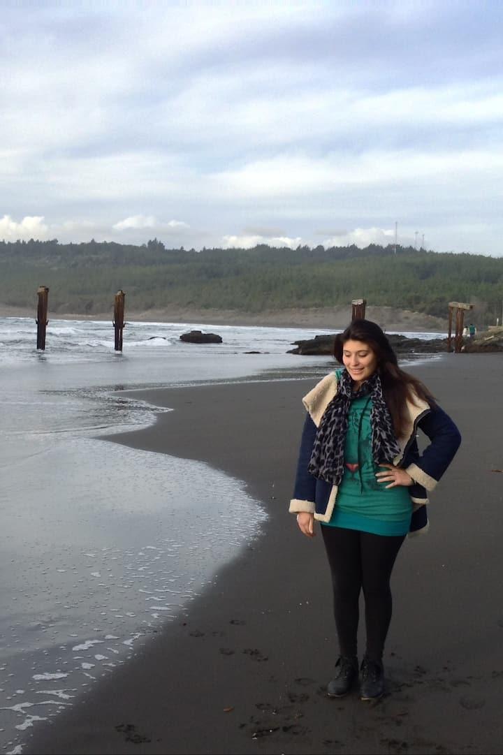 Playa y restos del muelle,Llico