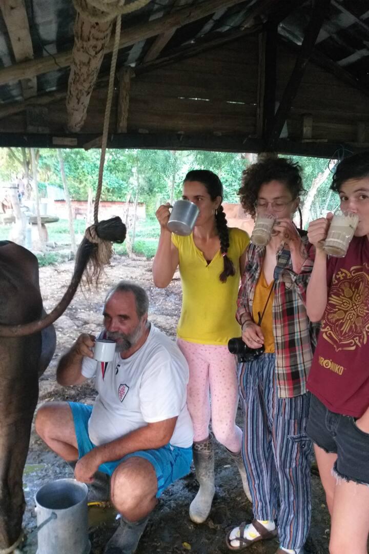 Degustando leche orgánica
