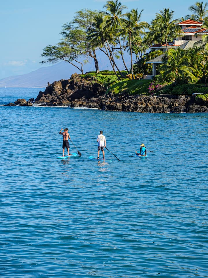 Makena Cove! Electric boards