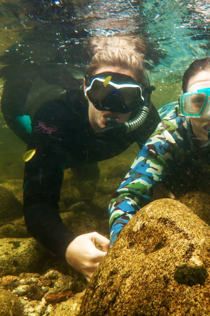Snorkelling with friends