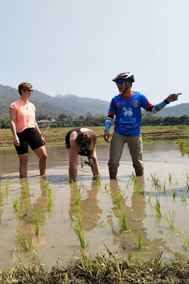 Learning how to plant rice.