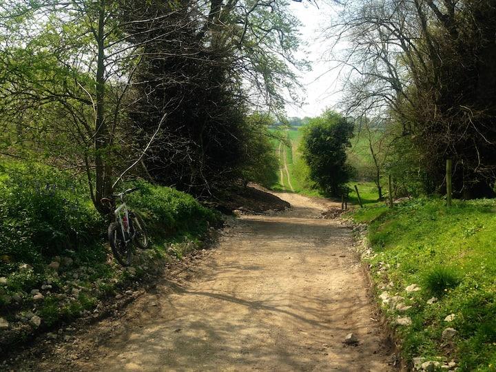 Secret bridleway