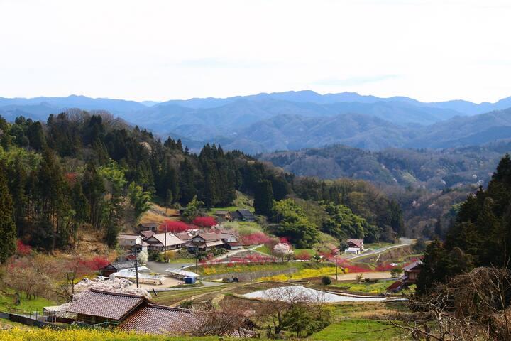 田舎の里山の風景