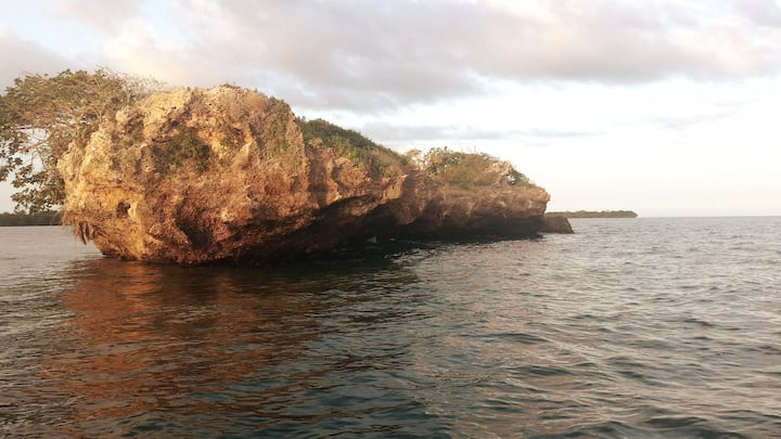 Kisite Mpunguti Marine National Park