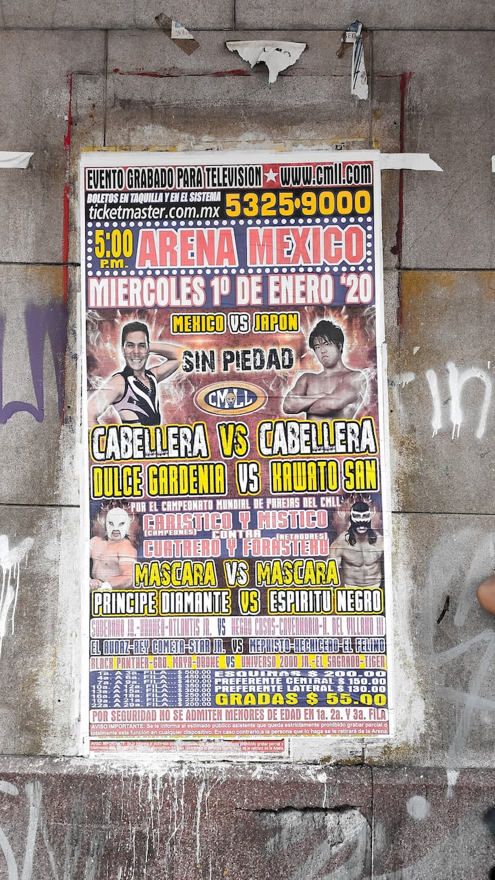 Luch Libre Poster