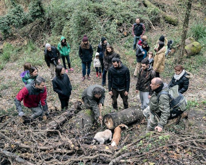 Follow the truffle hunter