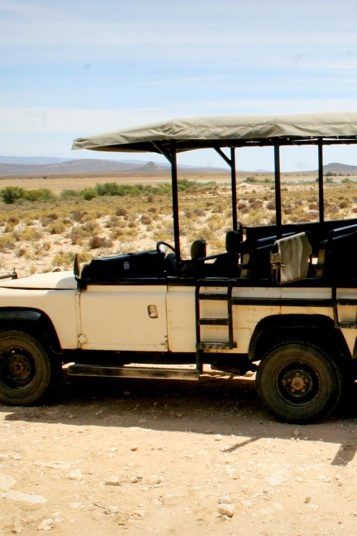 one of the safari vehicles