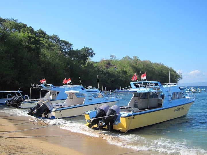 Our lovely day boats moored at the beach