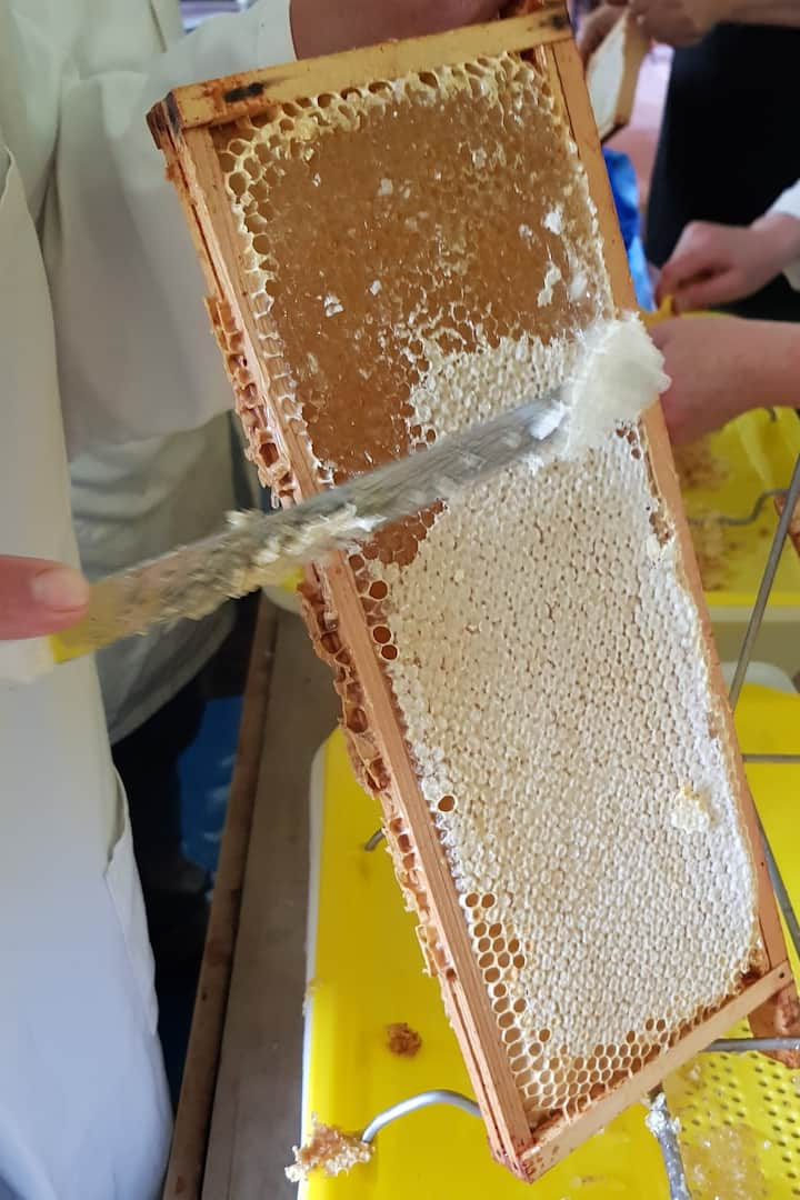 Removing wax to release honey