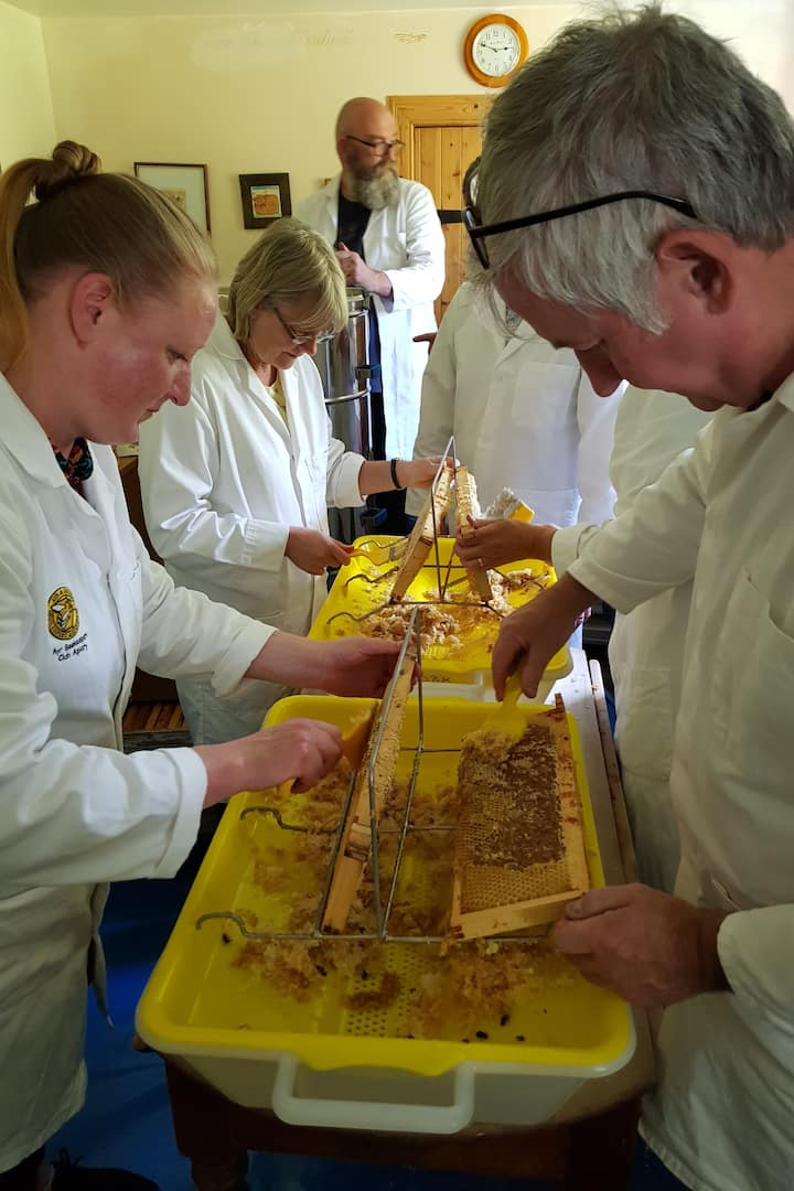 Uncapping wax to release honey