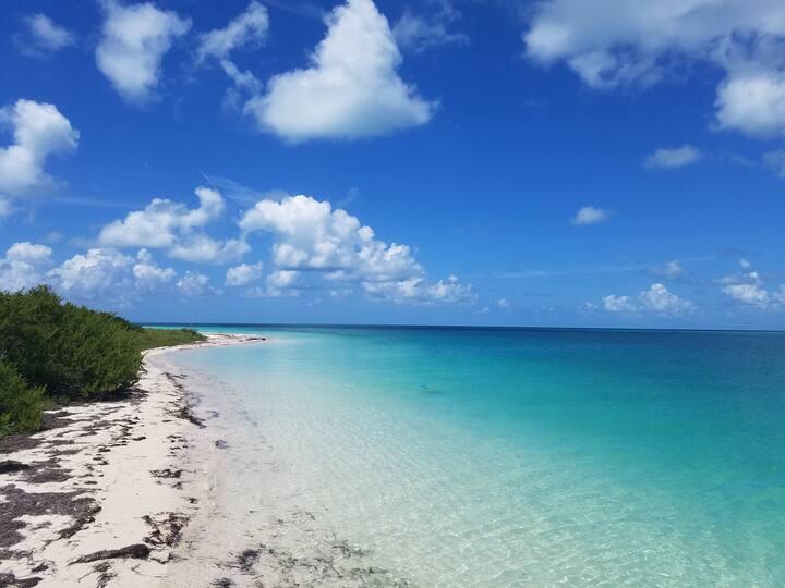 at the shore of Boca Grande