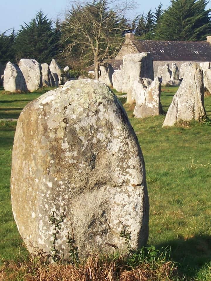 Une densité de pierres alignées !