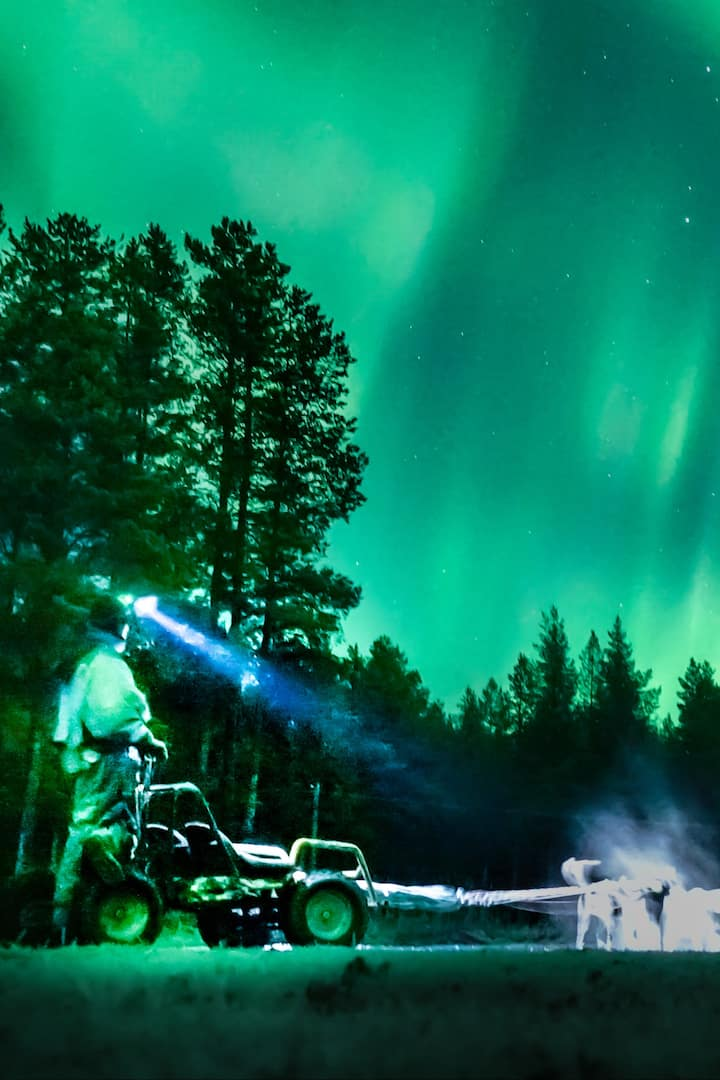 northern lights all over the sky!