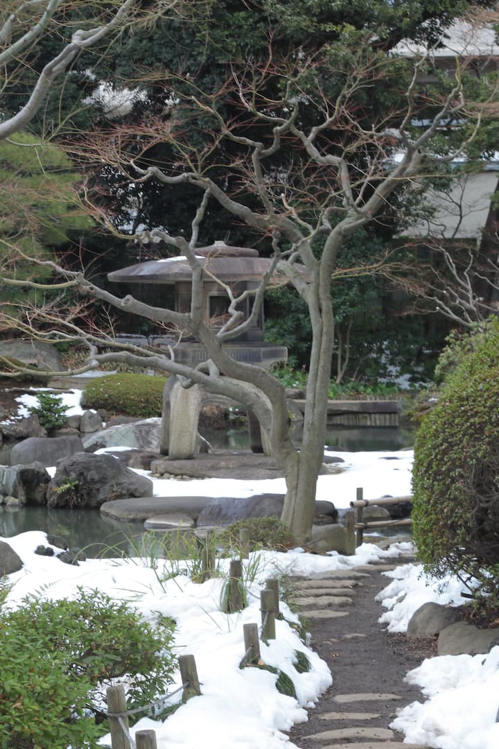 The Kyu-Furukawa garden in winter
