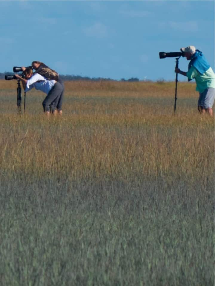 Photographer's in the Reserve