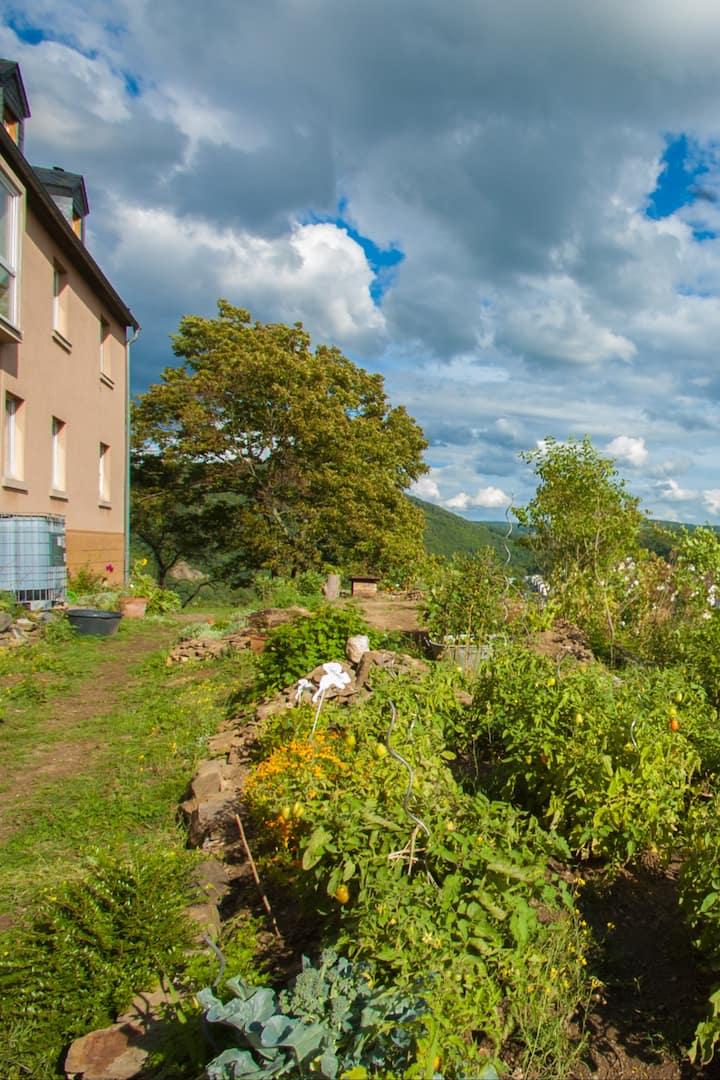 Klosterkräutergarten