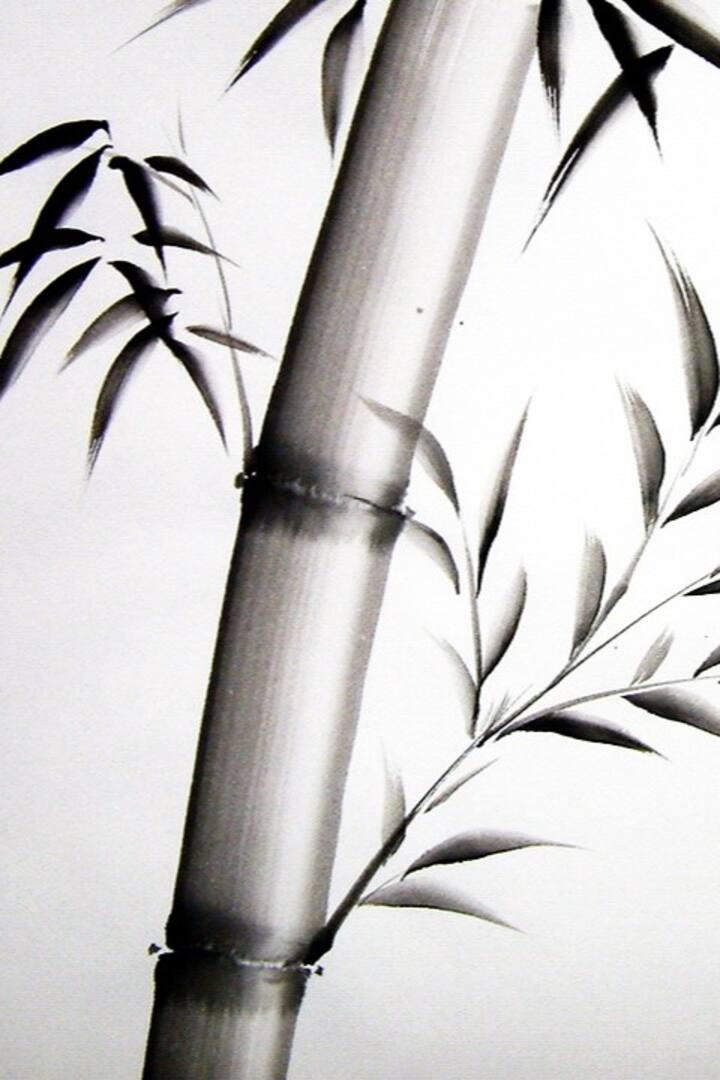 Basic Bamboo  sumi-e