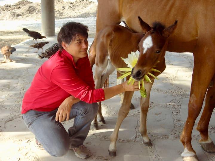 Many horses were born on the ranch