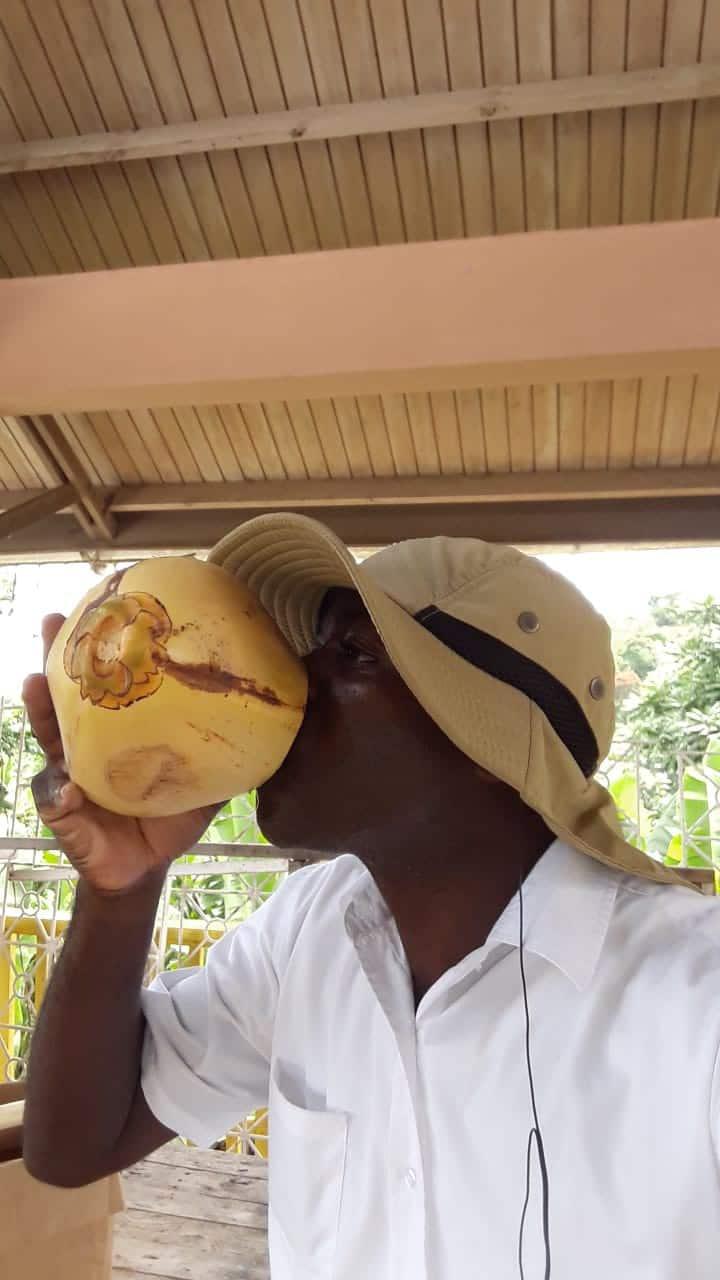 Coconut Jelly demonstration! Yum!