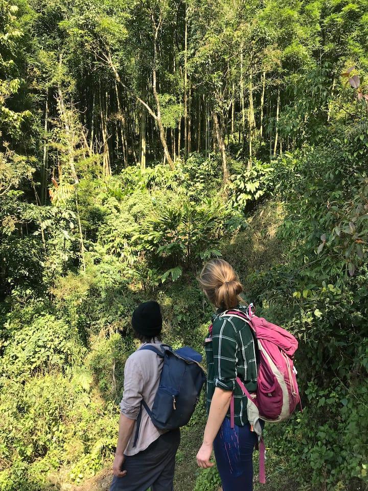 News trips to nurture village