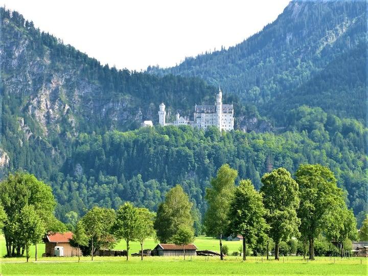 Ausblick: Auf dem Weg zum Schloss