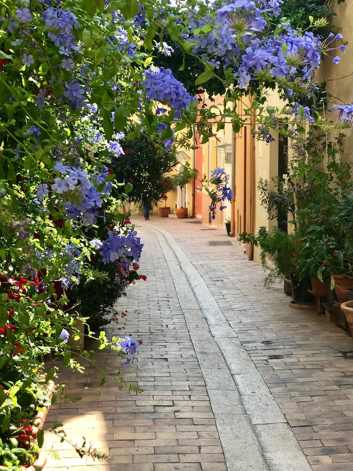 Cassis streets