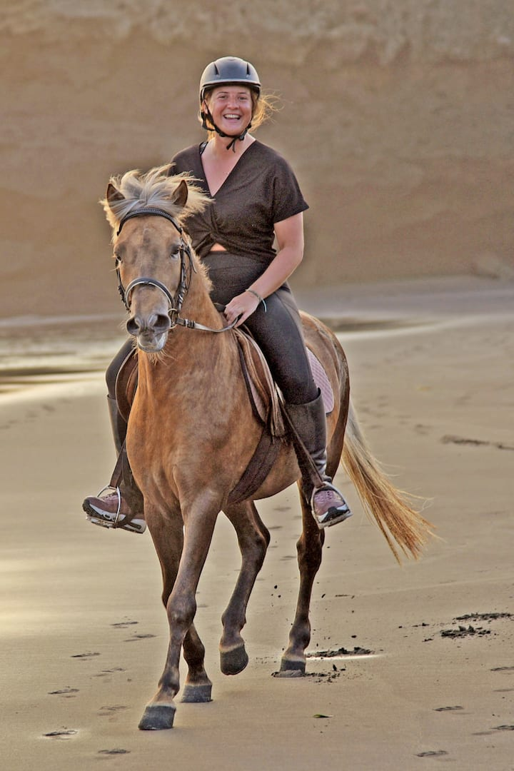 Healthy and happy horses